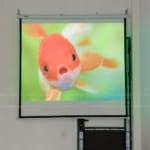 Lắp đặt 2 bộ máy chiếu Optoma PS368 tại Hà Nội